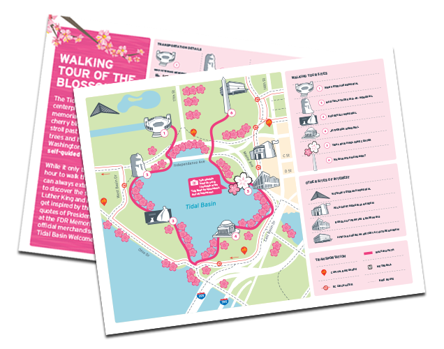 Cherry-Blossom-Walking-Tour_Cover-Graphic.png
